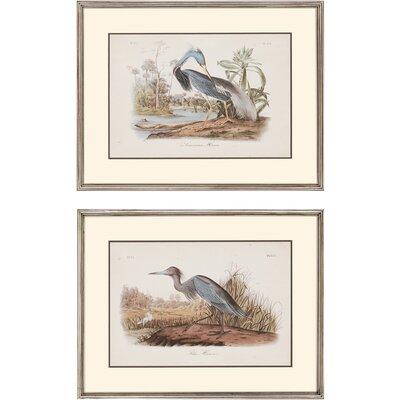 Audubon Herons by John Audubon 2 Piece Framed Graphic Art Set 4733