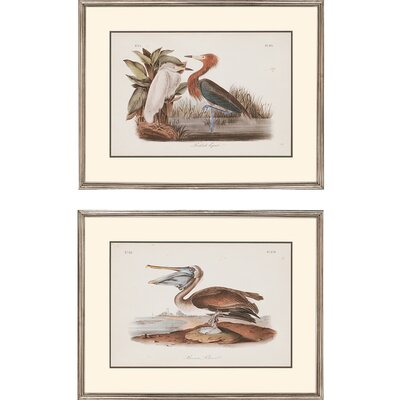 Audubon Egrets by John Audubon 2 Piece Framed Graphic Art Set 4734