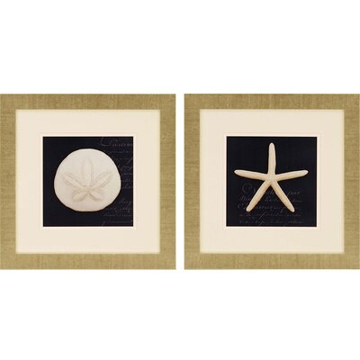 Nautical Blue II by Greenwood 2 Piece Framed Graphic Art Set 1099