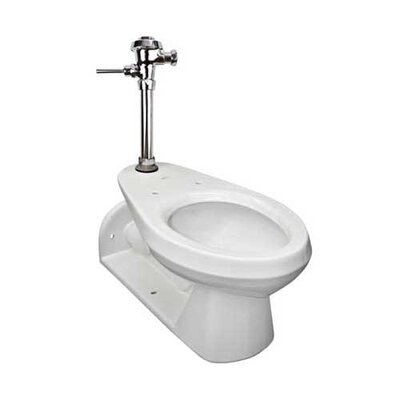 Commercial Dual Flush Elongated One-Piece toilet
