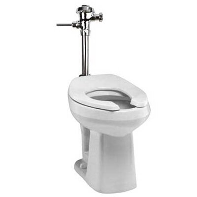 Adriatic Commercial Dual Flush Elongated One-Piece Toilet