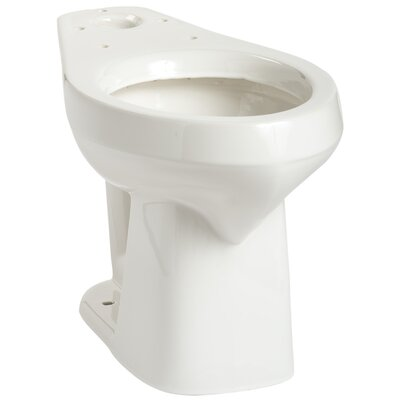 Alto SmartHeight Elongated Toilet Bowl