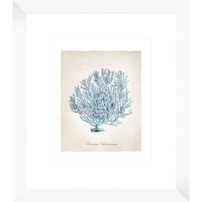 Teal Coral II Framed Painting Print 1-18964B