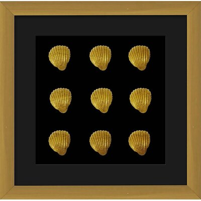 Shadowbox Framed Golden Seashells Wall Decor 1-30779