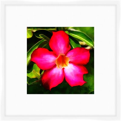 'Paradise Flowers I' Framed Painting Print 2-14635A