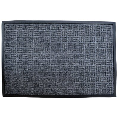 Molded Doormat Mat Size: Rectangle 24 x 36