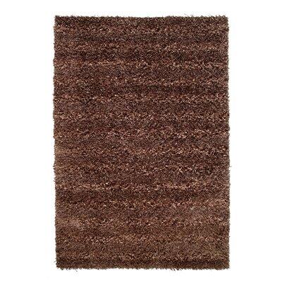 Seabury Hand-Woven Brown Area Rug Rug Size: 4 x 6