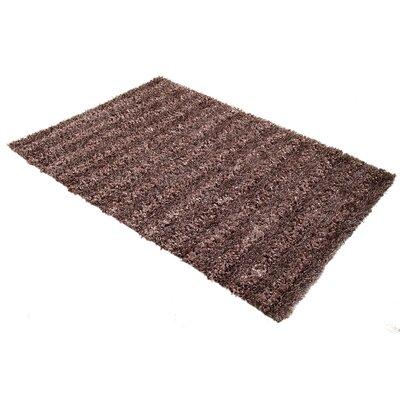 Seabury Amethyst Shag Area Rug Rug Size: 4 x 6