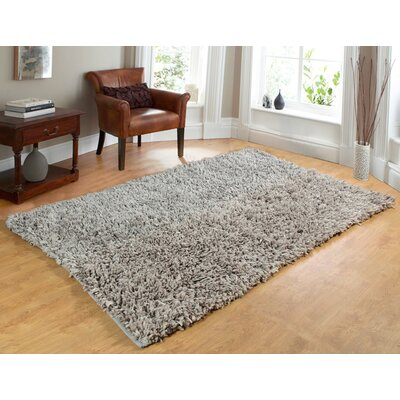 Comfy Hand-Woven Shag Silver Area Rug Rug Size: 5 x 7