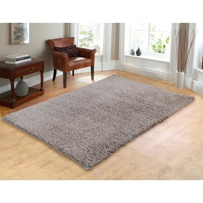 Hand-Woven Shag Silver Area Rug Rug Size: 73 x 93
