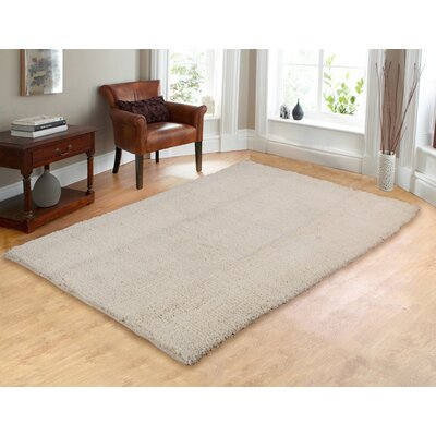 Hand-Woven Shag Ivory Area Rug Rug Size: 5 x 7