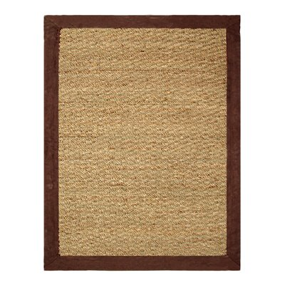 Seagrass Beige/Chocolate Area Rug Rug Size: 5 x 7
