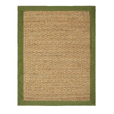 Seagrass Beige/Sage Indoor/Outdoor Area Rug Rug Size: 5 x 7