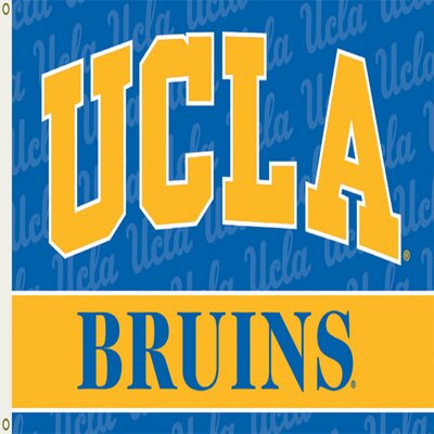 UCLA Bruins 2-Sided Polyester 3 x 5 ft. Flag 95053