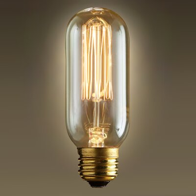 60W 120-Volt Edison Light Bulb
