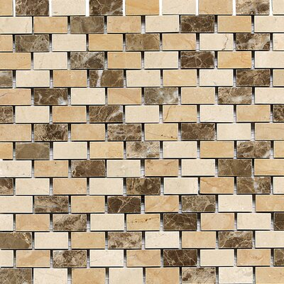 Marble Collection 1 x 1/2 Polished Natural Stone Accent Tile in Adda Blend