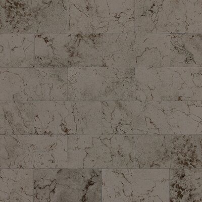 Marble Collection 6 x 3 Unpolished Polished Natural Stone Field Tile in Silver Screen