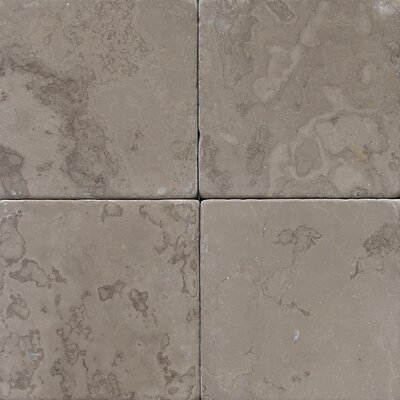 Marble Collection 4 x 4 Natural Stone Field Tile in Silver Screen