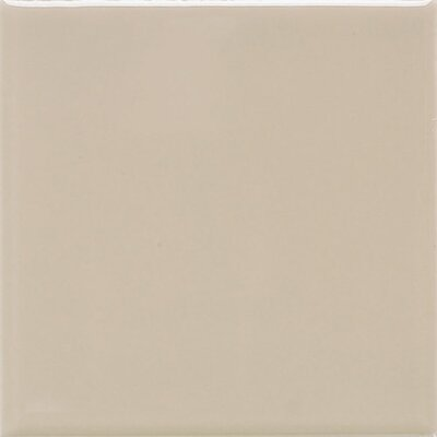 Rittenhouse Square 3 x 6 Ceramic Field Tile in Urban Putty