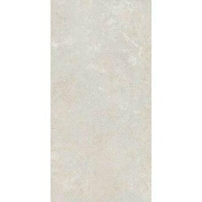 Florentine 10 x 14 Glazed Porcelain Field Tile in Argento