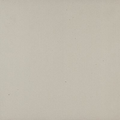 Aledo 48 x 24 Porcelain Field Tile in Grey
