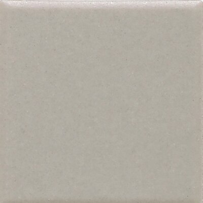 Keystones 2 x 2 Mosaic Field Tile in Desert Gray