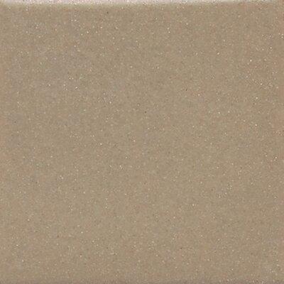 Keystones 2 x 2 Mosaic Field Tile in Elemental Tan