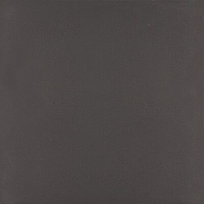 Aledo 12 x 24 Textured Porcelain Field Tile in Black