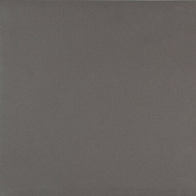 Exhibition 24 x 24 Polished Porcelain Field Tile in Dark Gray