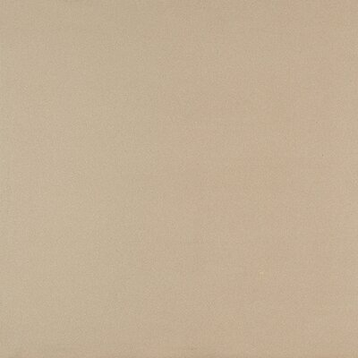 Exhibition 24 x 24 Porcelain Polished Field Tile in Mode Beige
