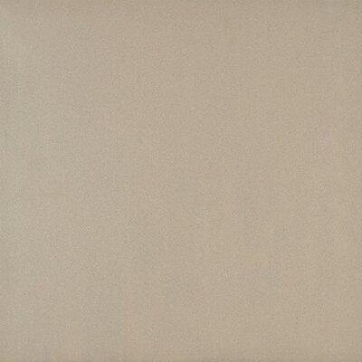 Aledo 24 x 24 Polished Porcelain Field Tile in Tailor Beige