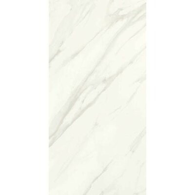 Florentine 10 x 14 Porcelain Glazed Field Tile in Carrara