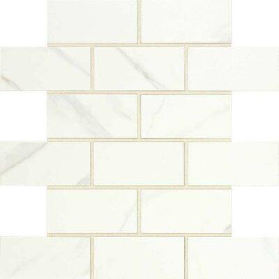 Florentine 2 x 4 Glazed Porcelain Mosaic Field Tile in Carrara
