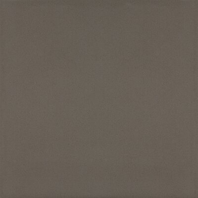 Aledo 24 x 24 Polished Porcelain Field Tile in Modern Tan