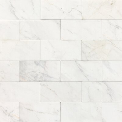 Marble Collection 6 x 3 Lightly Polished Natural Stone Field Tile in Contempo White