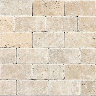 Travertine Collection 6 x 3 Lightly Polished Natural Stone Field Tile in Mediterranean Ivory