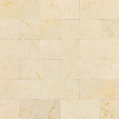 Marble Collection 6 x 3 Unpolished Polished Natural Stone Field Tile in Crema Marfil Classico