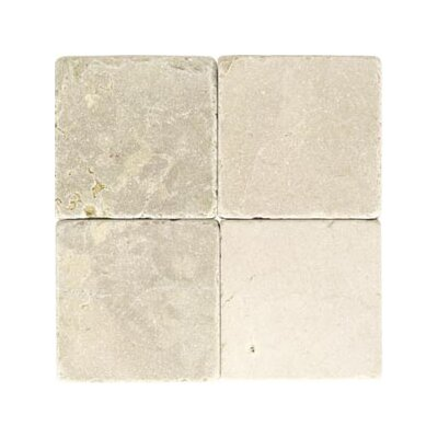 Marble Collection 6 x 6 Natural Stone Field Tile in Crema Marfil Classico