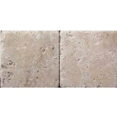 Travertine Collection 2 x 2 Glazed Porcelain Field Tile in Ivory Classico