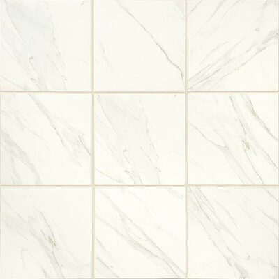 Florentine 24 x 24 Porcelain Tile in Carrara