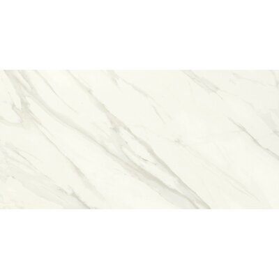 Florentine 12 x 24 Wall Tile in Carrara
