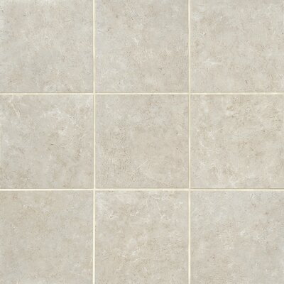 Florentine 12 x 24 Field Tile in Argento