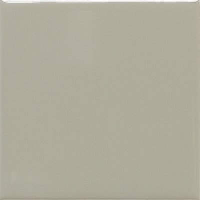 Modern Dimensions 12.75 x 4.25 Surface Bullnose Tile Trim in Matte Architectural Gray (Set of 2)