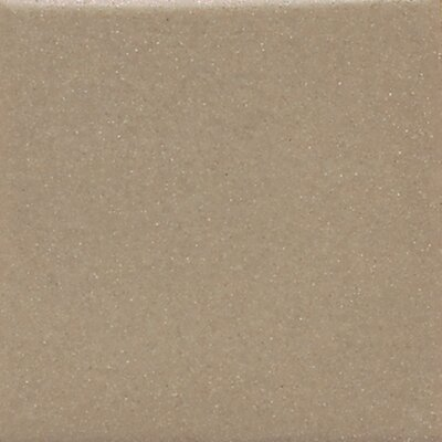 Modern Dimensions 8.5 x 4.25 Bullnose Tile Trim in Matte Elemental Tan (Set of 3)