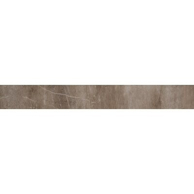 Rowe 6 x 48 Porcelain Field Tile in Cosmo