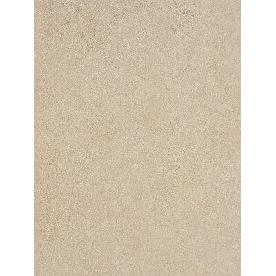 Parkway 12 x 24 Field Tile in Beige