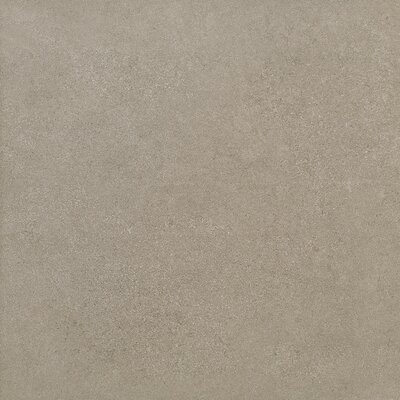 Parkway 12 x 24 Field Tile in Gray