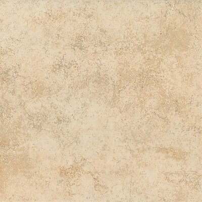 Brixton 12 x 12 Ceramic Field Tile in Mushroom