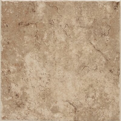 Fidenza 18 x 18 Porcelain Field Tile in Caf�