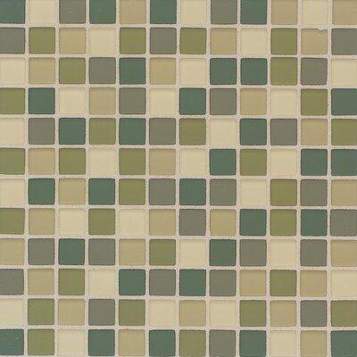 Daltile Gl Maracas Rainforest Blend 1 In X Tile 12